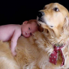 Kids and Dogs Safety Tips