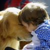 Choosing a Dog for Your Child