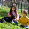 Kids and Pets: Will it Work?